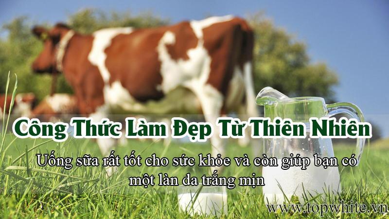 Công thức làm đẹp từ thiên nhiên với sữa tươi